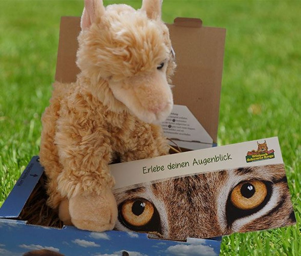 Alpaka-Geschenkbox groß