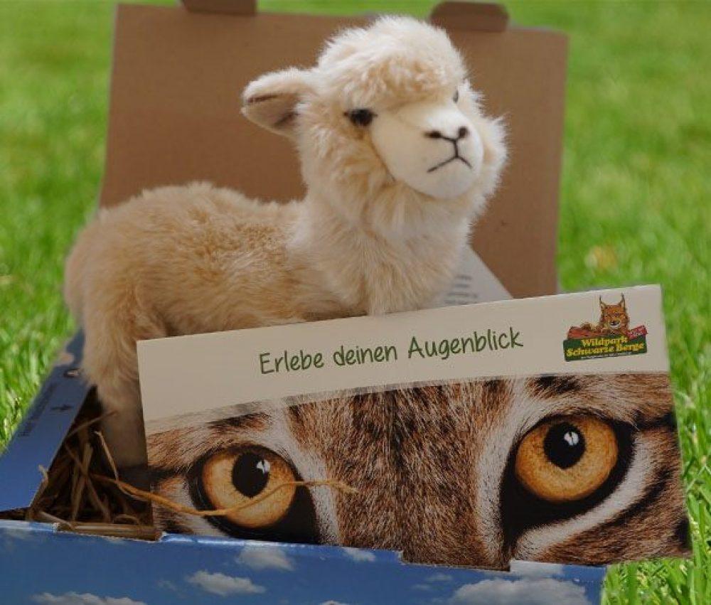 Alpaka-Geschenkbox klein