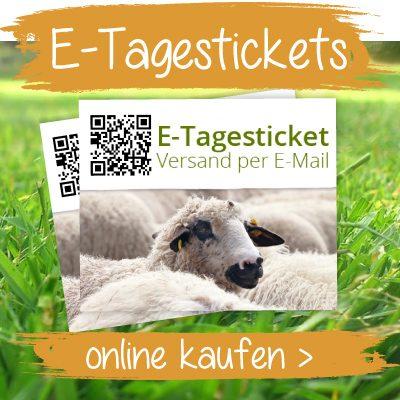 E-Tagestickets online kaufen