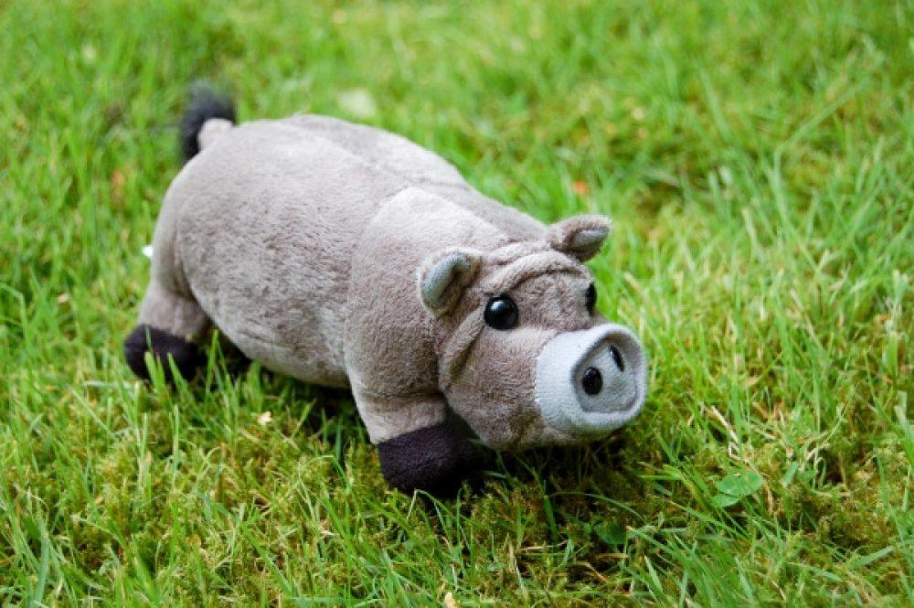 Hängebauchschwein Kuscheltier im Gras