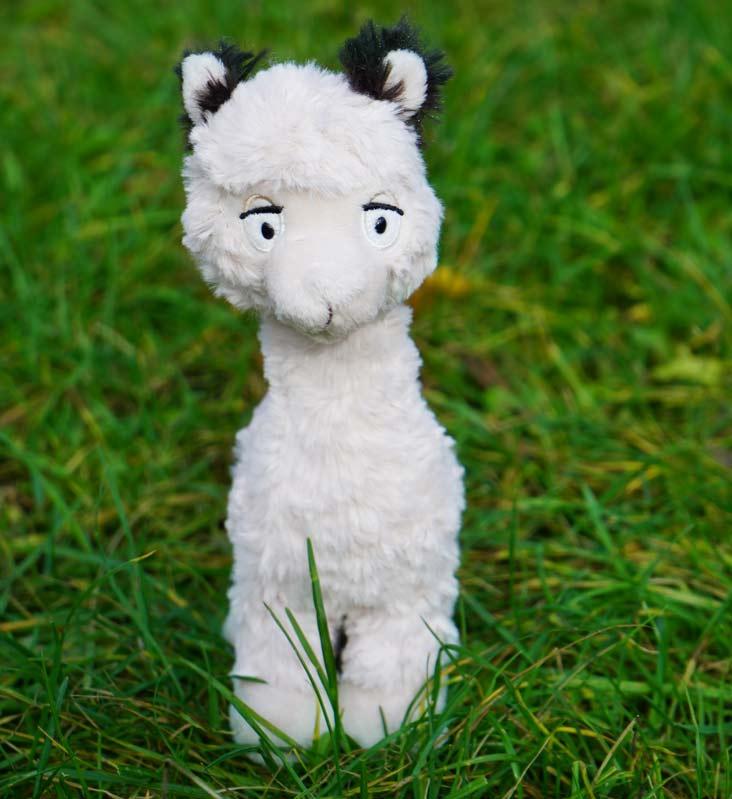 Alpaka weiß frotal klein