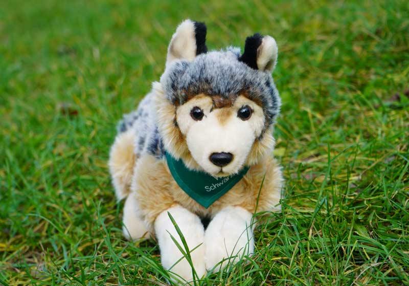 Wolf von vorne mit Tuch