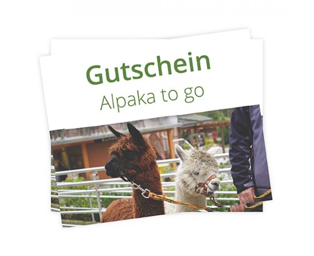 Gutschein Alpaka to go